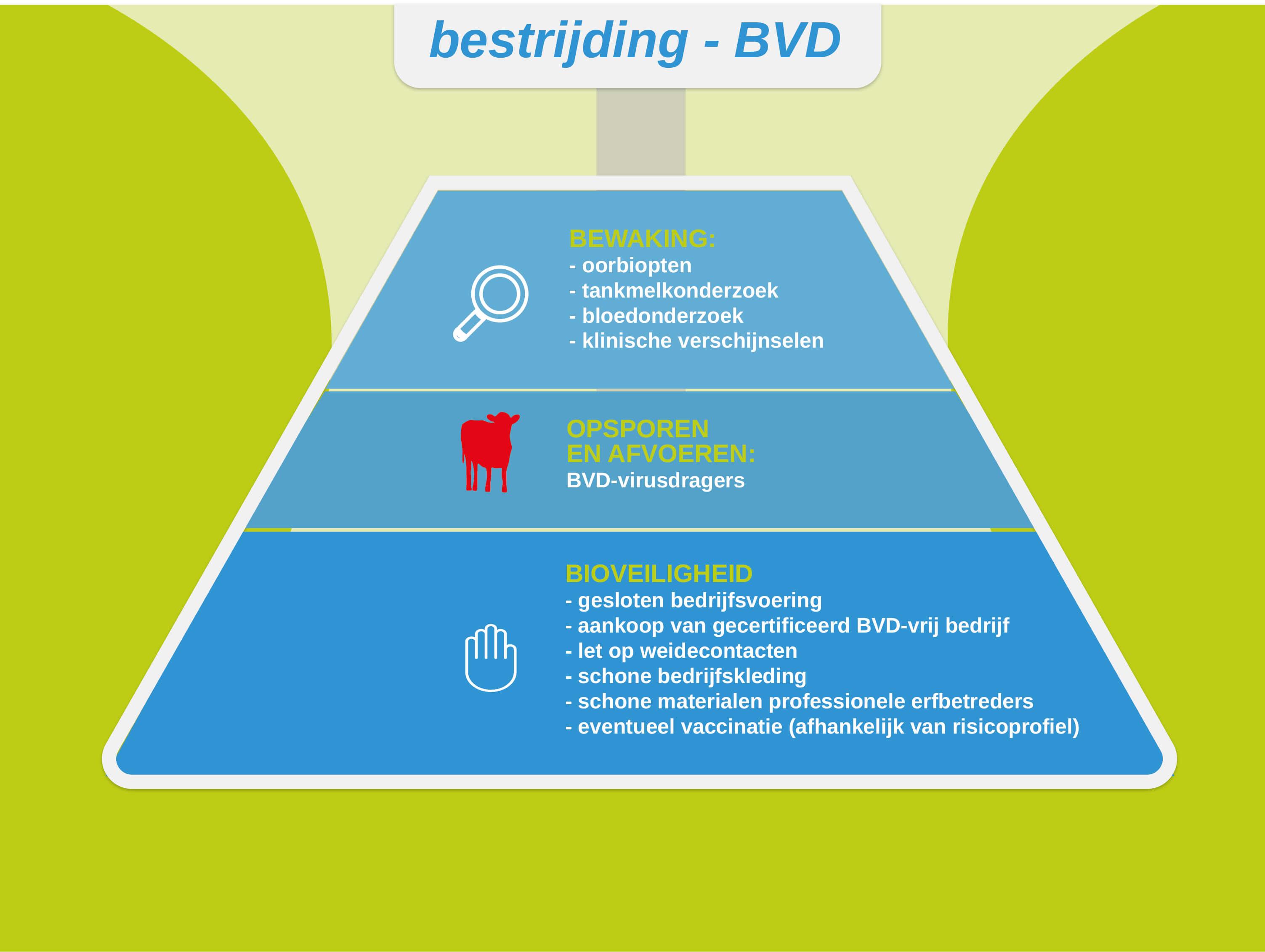 De pijlers onder de bestrijding van BVD