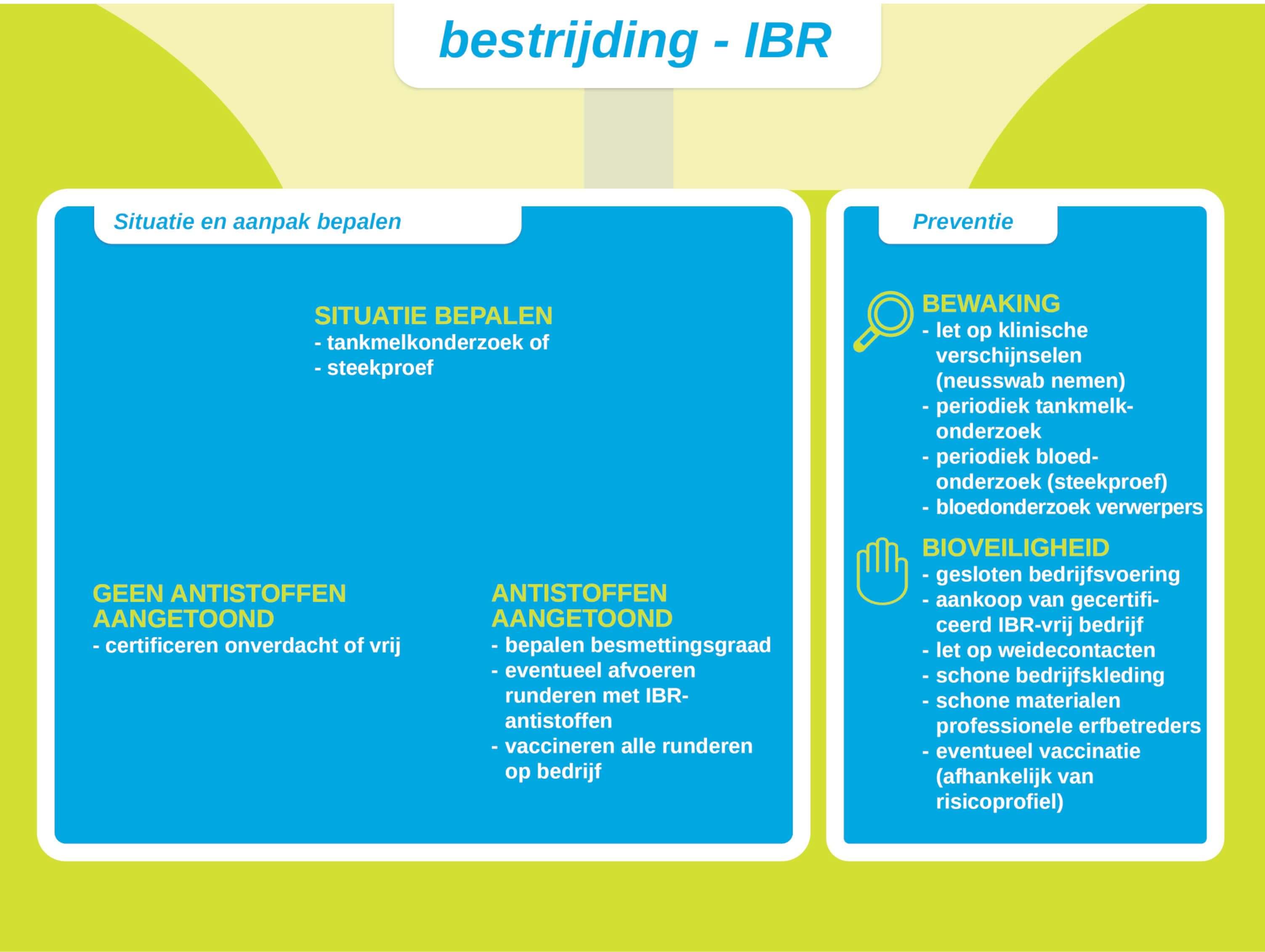 Pijlers bestrijding IBR