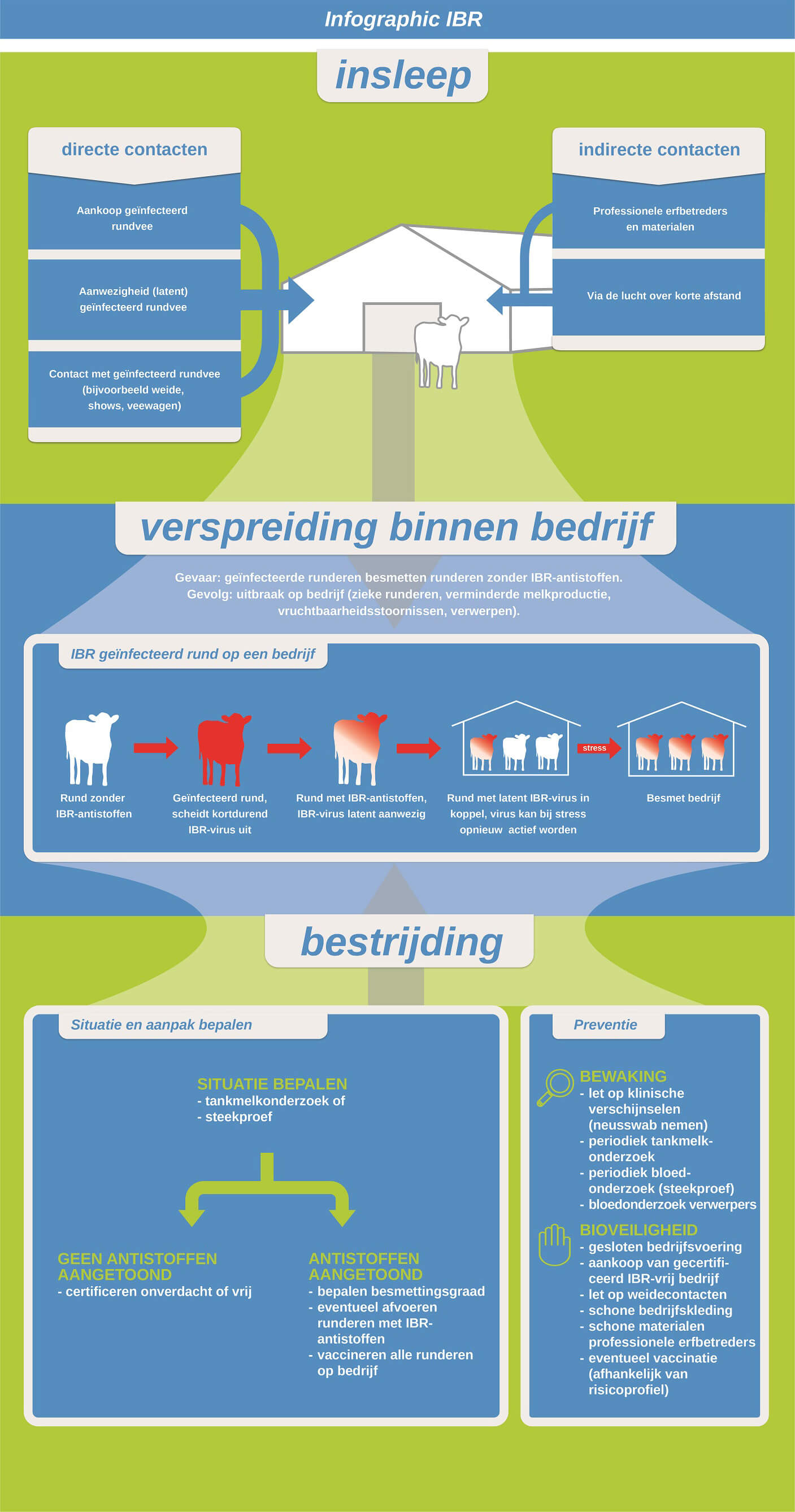 GD IBR infographic