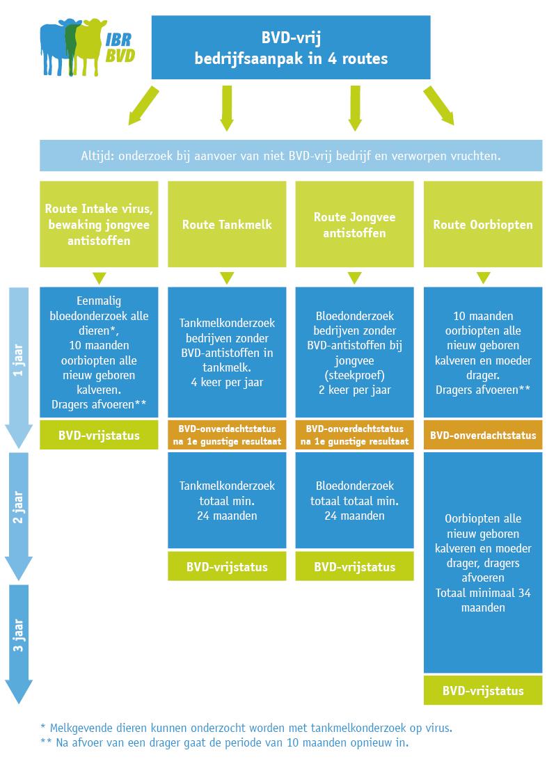 De vier routes voor aanpak van BVD op hoofdlijnen